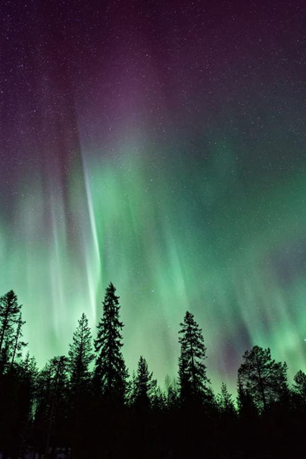 Adota uma aurora boreal!