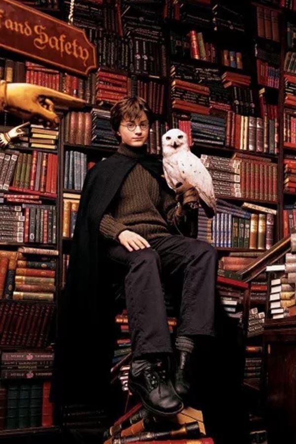 """Harry Potter afinal não tem """"pronúncia do norte""""!"""