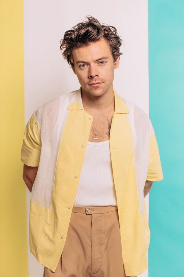 """Harry com muito ou pouco """"style""""?!"""