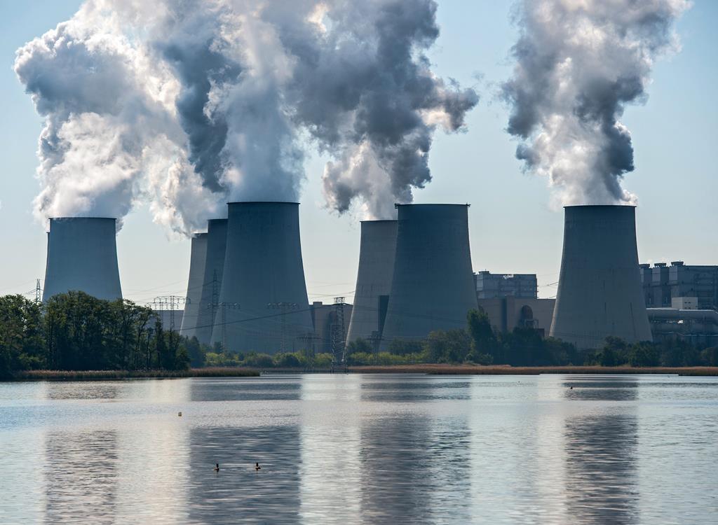 Nem o pneumologista António Morais nem a investigadora Myriam Lopes advinham um futuro de ar puro, com zero emissões.  Foto: EPA