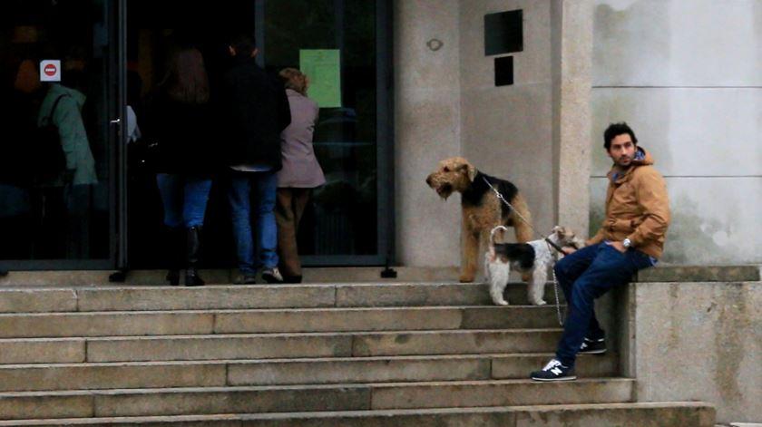 Pepe (cão mais pequeno) aguarda com um amigo do dono e outro cão.