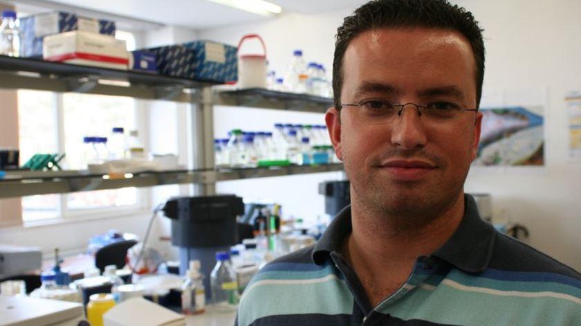 Portugueses descobrem proteína chave na doença de Parkinson