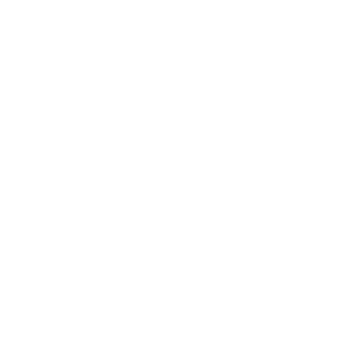 Madeira Film Experience