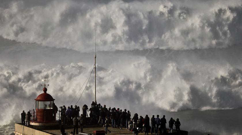 """""""Estamos à mercê da Nazaré"""". MacNamara volta a desafiar as ondas"""