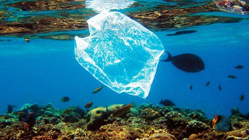 Atlântico pode ter 10 vezes mais plástico do que se pensava