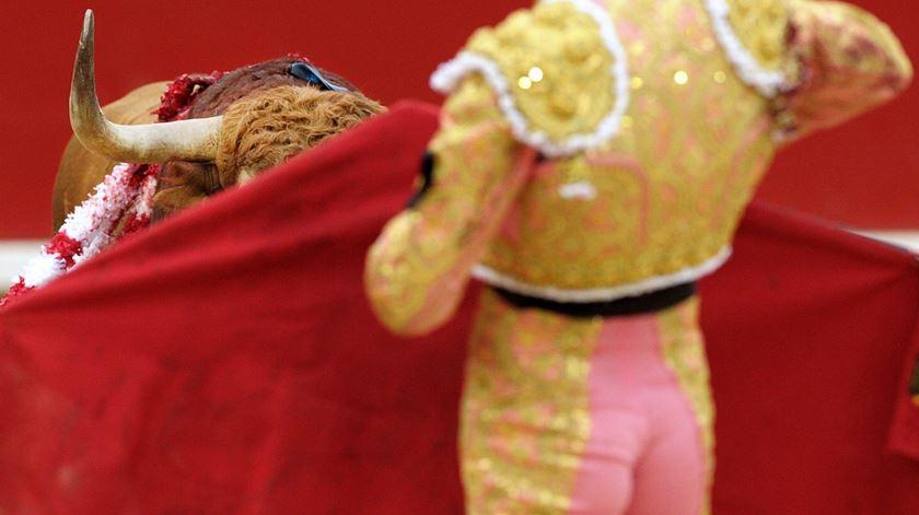 CDS propõe voto de pesar pela morte do matador de touros Mário Coelho