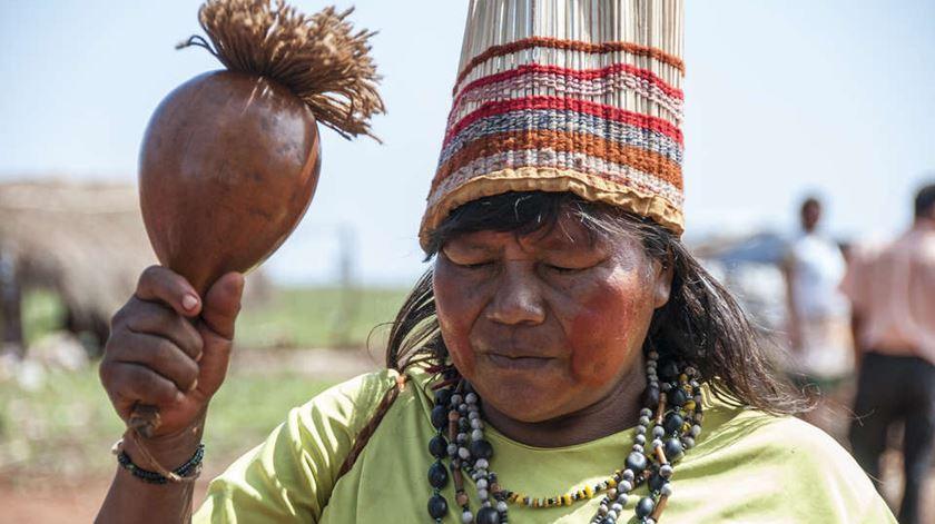 Guaranis na lista de tribos perseguidas. Foto: Fiona Watson/Survival