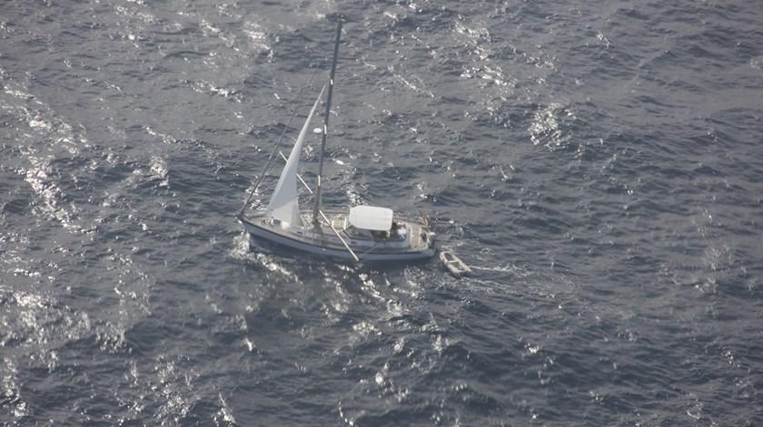 Tripulantes de veleiro resgatados nos Açores após choque com baleia