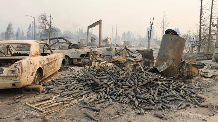 Incêndios na Califórnia já fizeram 31 mortos
