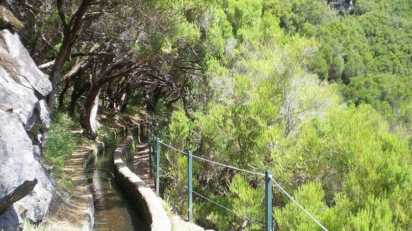 Madeira tem plano para evitar catástrofes naturais, mas apenas deverá estar concluído em 2023
