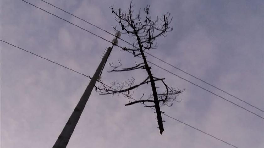 """Milhares ainda sem luz. Veja como a """"Leslie"""" destruiu a rede elétrica"""