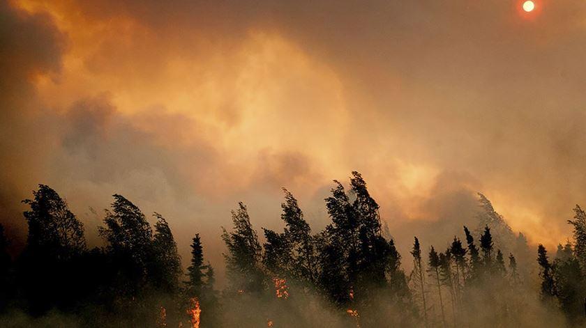 Incêndio no estado norte-americano do Alasca, a 14 de julho. Foto: Reuters