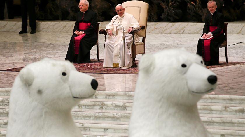 Dois ursos invadiram o Vaticano e o Papa falou-lhes de um Natal distorcido