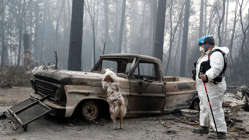 56 mortos e 130 desaparecidos na Califórnia