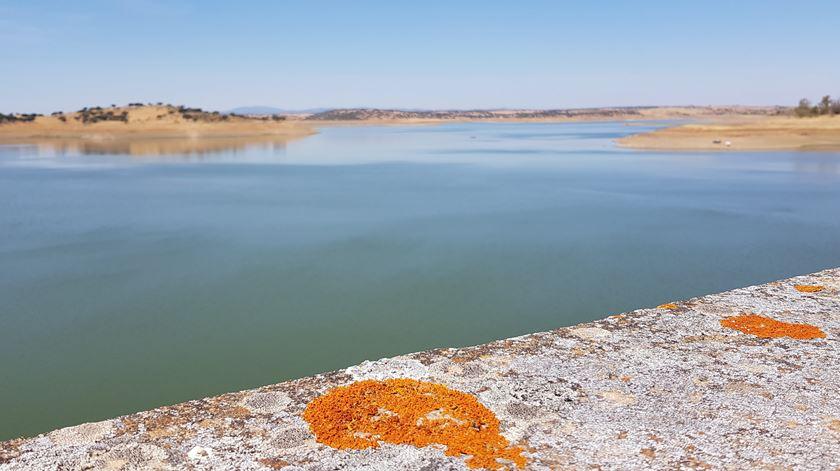 Quase um terço de Portugal continental ainda em situação de seca