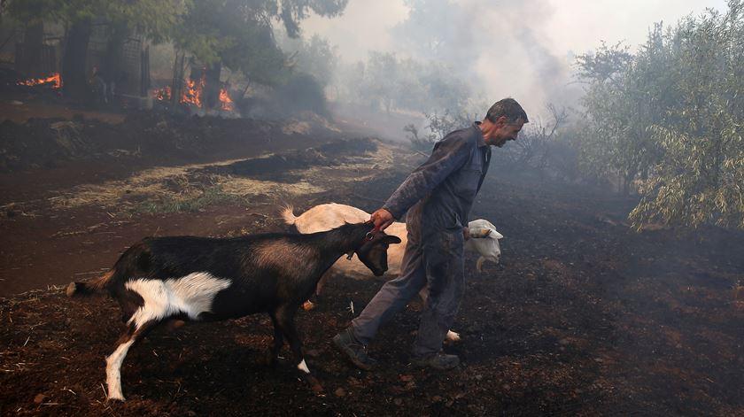 Incêndio na aldeia de Makrimalli, na Grécia. Foto: Costas Baltas/ Reuters