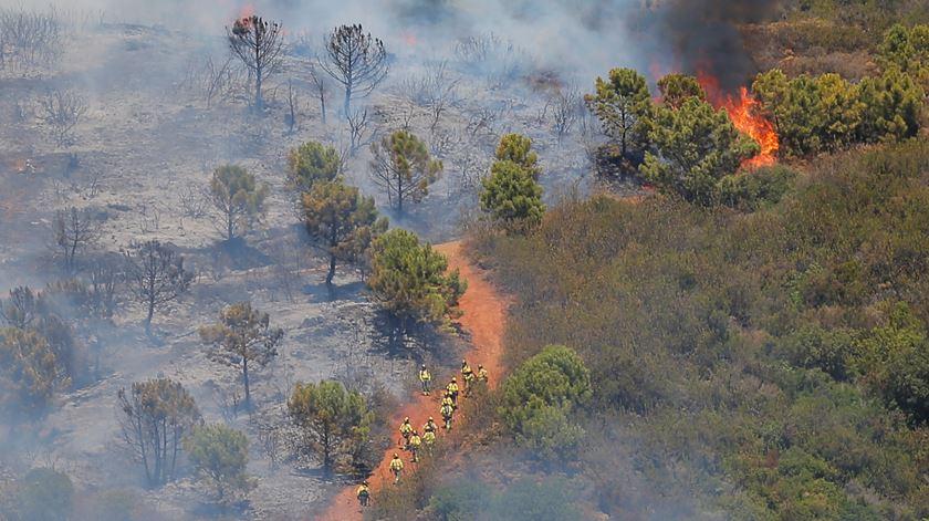 Cerca de duas mil pessoas foram retiradas de casa em Estepona, um município na provícia de Málaga, em Espanha, devido a um incêndio que deflagrou numa zona florestal. Foto: Jon Nazca/ Reuters