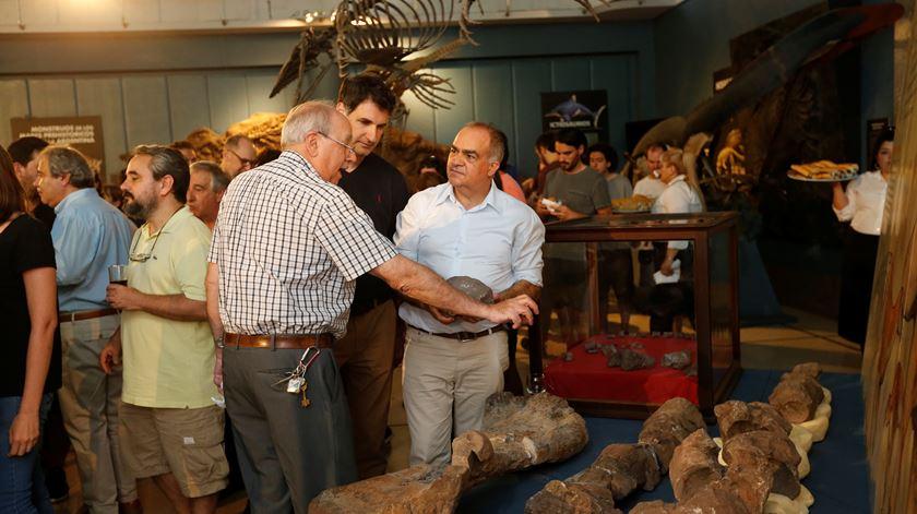 Argentina. Cientistas descobrem fósseis de novas espécies de dinossauros