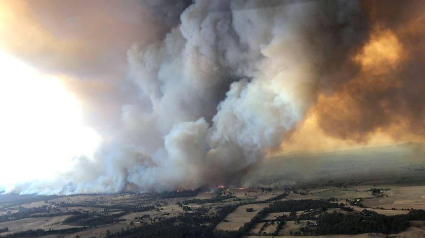 Incêndios devastadores na Austrália justificam estado de emergência em Nova Gales do Sul