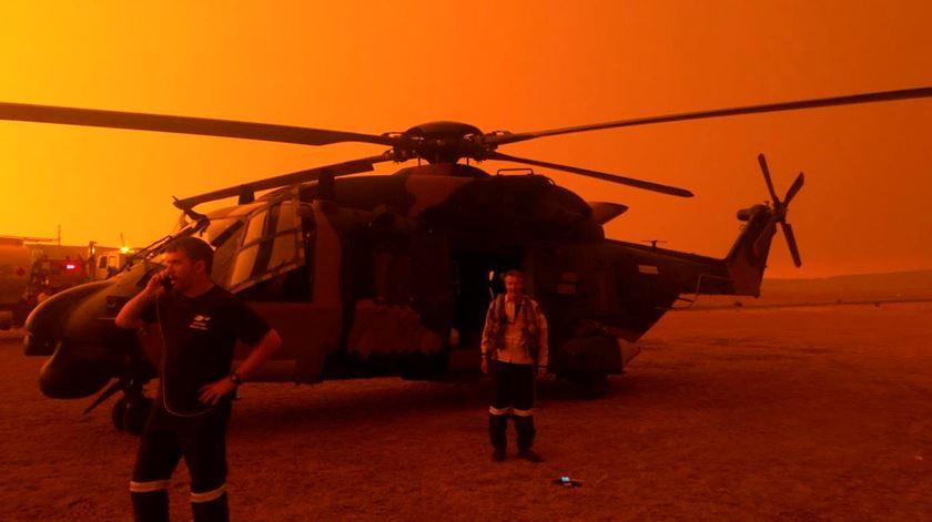 Cerca de mil milhões de animais morreram na Austrália. País enfrenta maior evacuação em massa