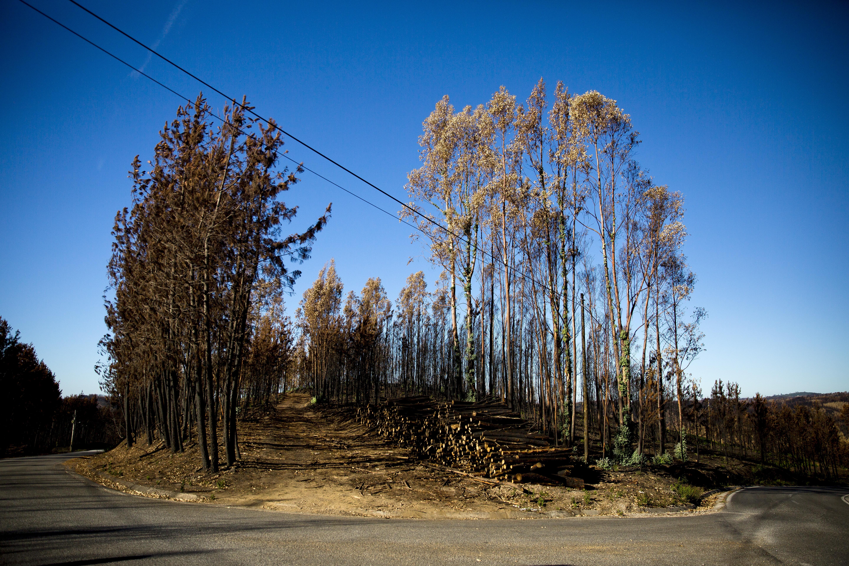 Postos de vigia contra incêndios estão fechados desde 1 de outubro