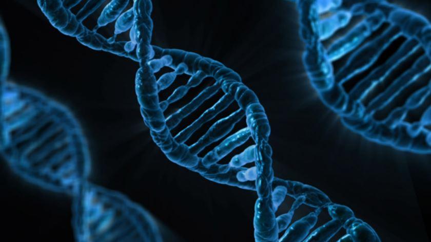 Quantos gramas de ADN tem o corpo humano?