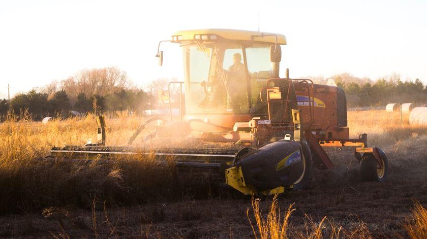 Bruxelas vai devolver sete milhões de euros aos agricultores portugueses