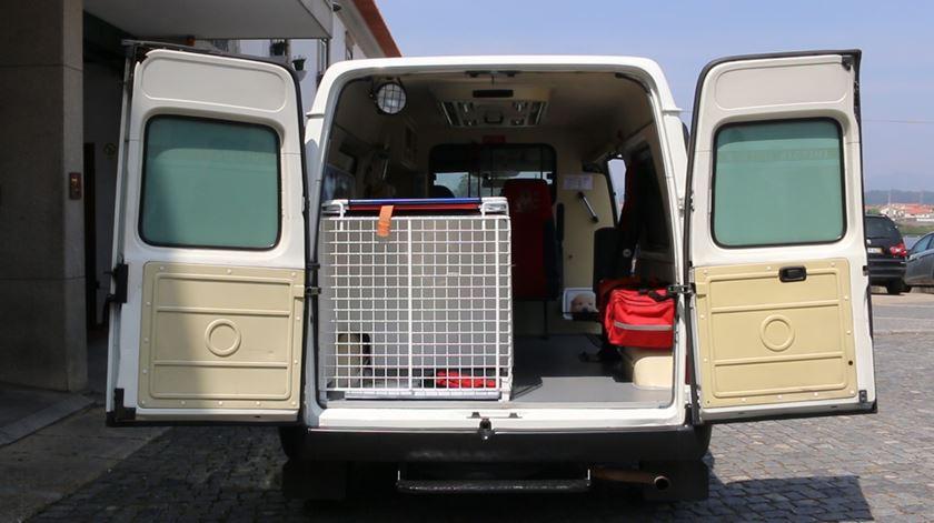 Cães e gatos têm uma ambulância exclusiva em Fão