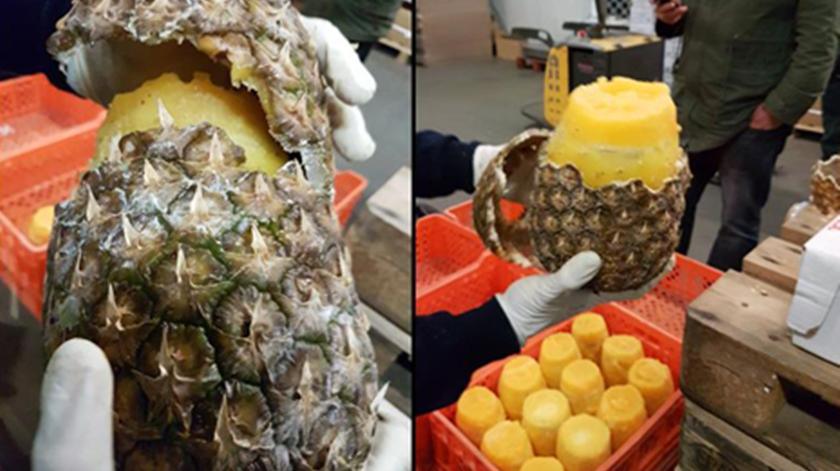 Cocaína dentro de ananases. As imagens da operação policial