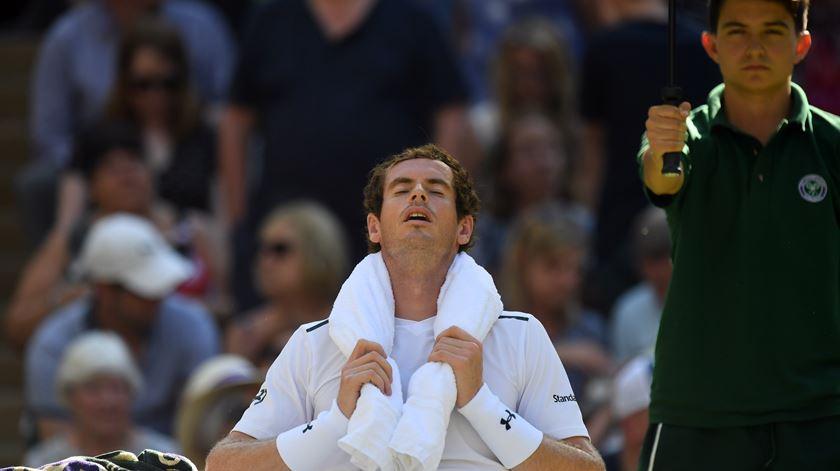 """Murray pára seis meses e volta aos """"courts"""" a tempo de Wimbledon. Foto: EPA"""