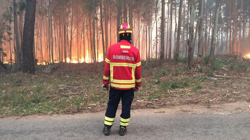 Vítimas de incêndio vão receber IVA relativo às linhas de apoio de valor acrescentado. Foto: Joana Bourgard/RR