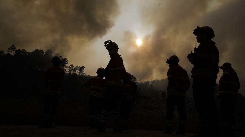 Dominado incêndio que deflagrou em Oliveira de Frades