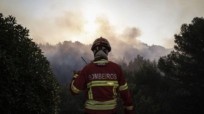 """Risco de incêndio. Seis distritos continuam em alerta laranja, """"tolerância zero"""" ao uso do fogo"""