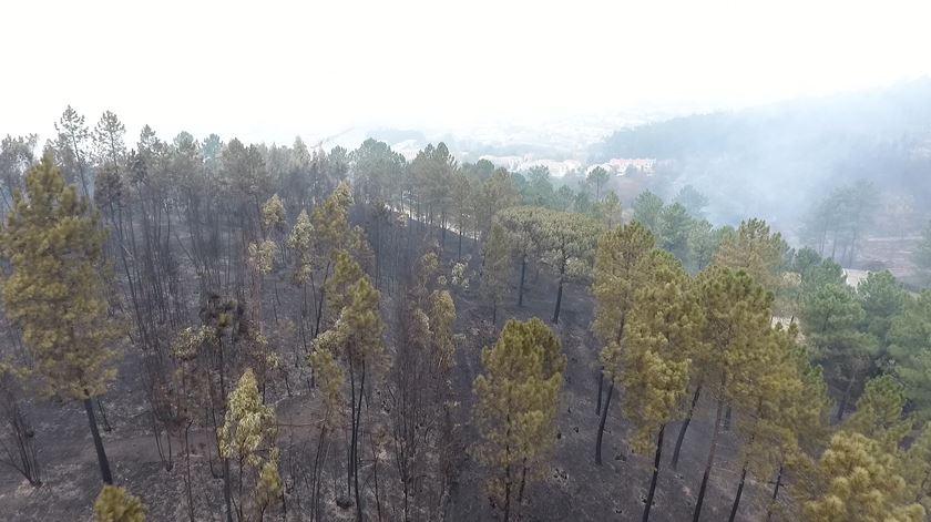 """A Braga que o fogo enegreceu vista a partir de um """"drone"""""""