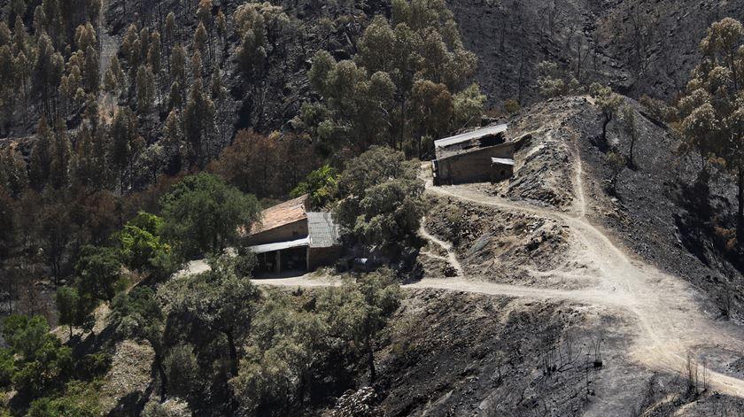 """Um ano depois do incêndio de Monchique nenhuma casa foi reconstruída. """"Será necessário mais um ano para ficar resolvido"""""""