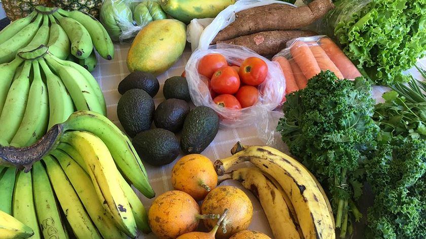 Alguns alimentos anticancro. Foto: DR