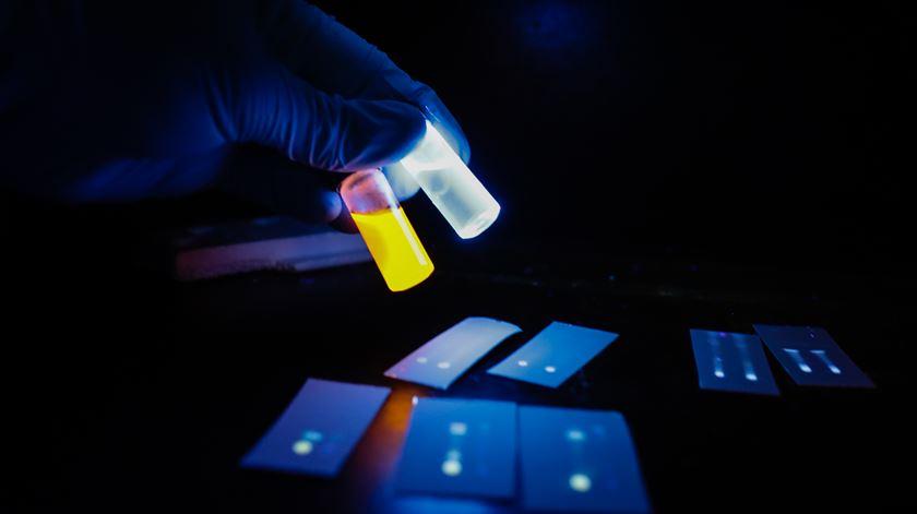Guerra ao vírus. Estudo aponta 21 medicamentos para a Covid-19