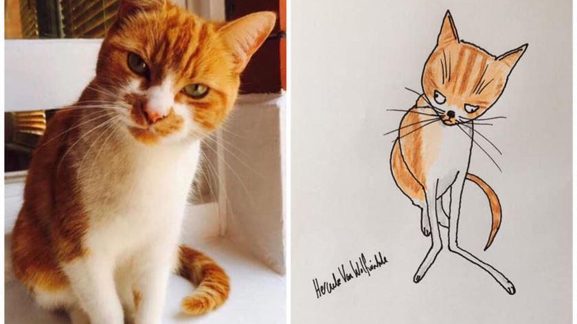 Esta gata é a Hattie. Foto: Facebook/Pet Portraits by Hercule