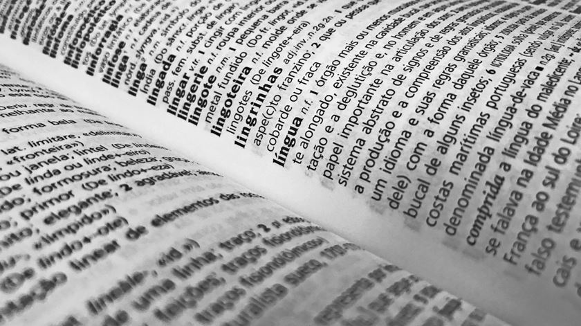 """Desinformação, lítio ou jerricã? Já são conhecidas as dez candidatas a """"Palavra do Ano"""""""