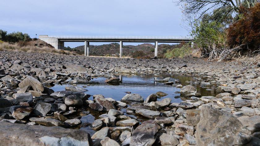 """Algarve tem """"obrigação"""" de reutilizar águas tratadas na agricultura, diz investigadora"""