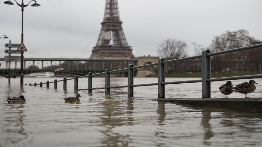 Cheias põem Paris em alerta