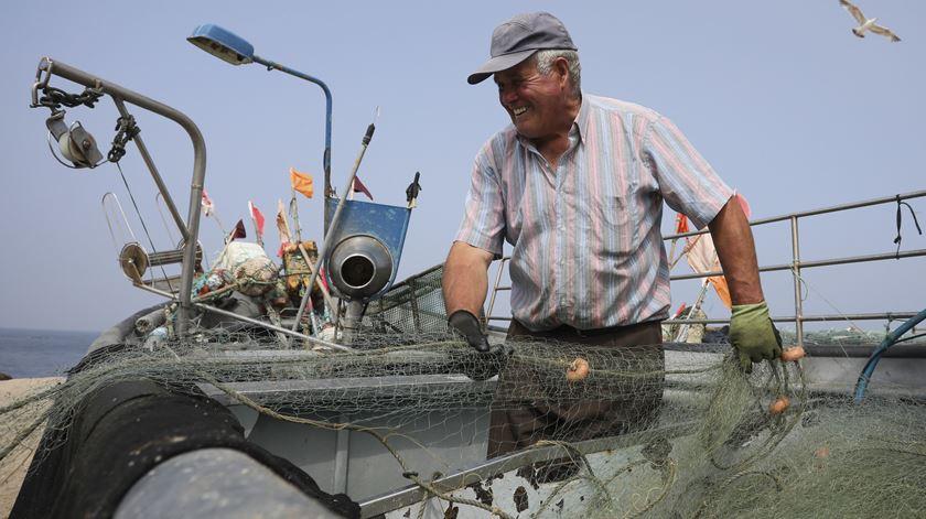 Covid-19. Dois mil pescadores começam a ser testados na sexta-feira