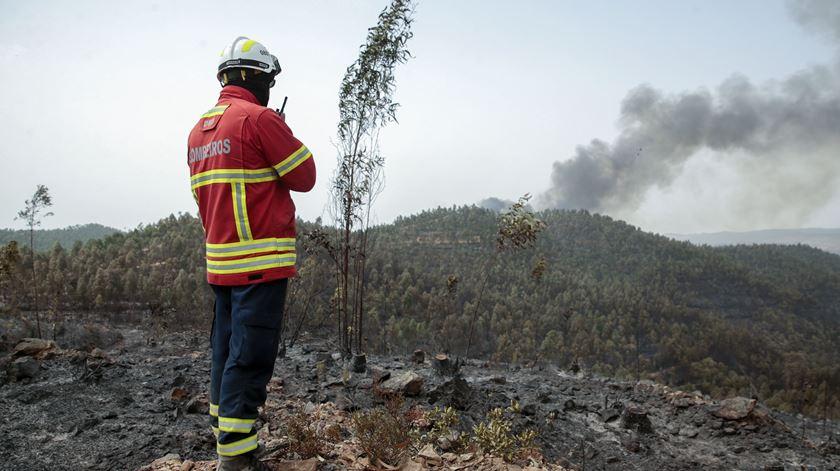 Queimadas entre as principais causas dos fogos até final de agosto
