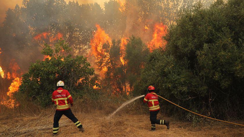 Sete concelhos do Algarve em risco máximo de incêndio