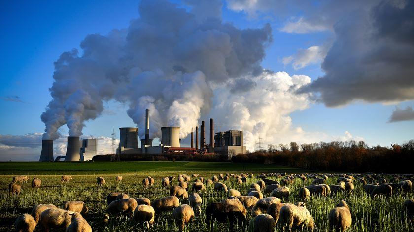 """Alterações climáticas. Cumprir Acordo de Paris """"vai salvar um milhão de vidas por ano"""""""