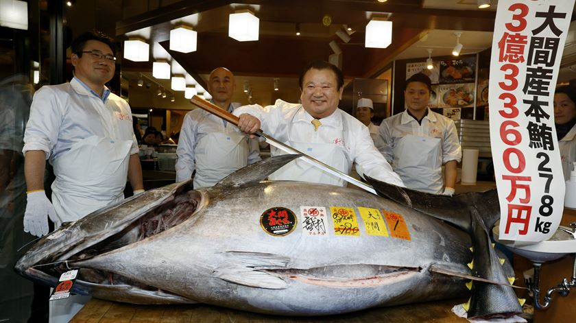 Atum milionário bate recorde em leilão no Japão
