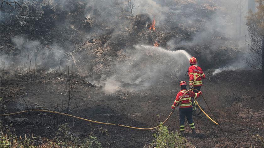 Pelo menos 30 feridos nos incêndios de Castelo Branco e Santarém