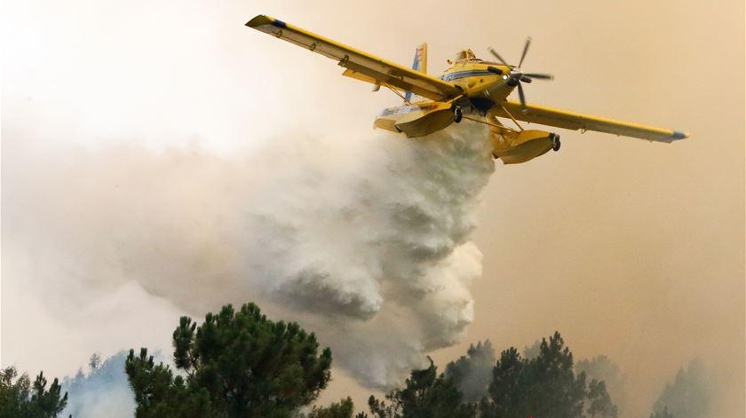 """Observatório diz que contexto do risco de incêndios para este ano é """"preocupante"""""""