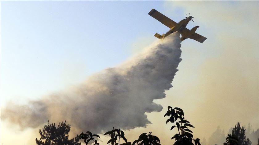 """Os incêndios de Castelo Branco foram classificados como """"catástrofe"""". Foto: António José/Lusa"""