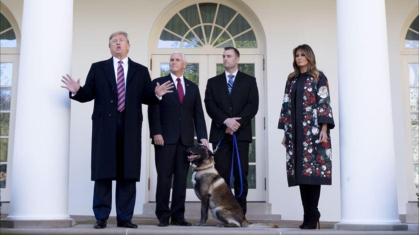 """Trump recebeu """"Conan"""", o cão que ajudou a apanhar líder do Estado Islâmico"""